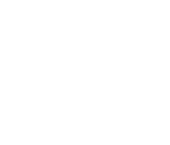 Logo Two Cents Ace